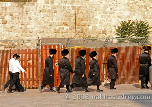 Orthodox jews western wall jerusalem