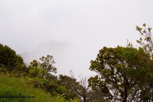Kalalau valley viewpoint kauai hawaii fogged up