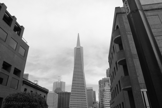 San Francisco Transamerica Building